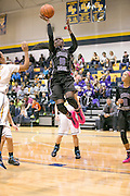 Cedar Ridge's Lashann Higgs attempts a jumper against Stony Point Friday. The Raiders rolled the Tigers 75-37.  (LOURDES M SHOAF for Round Rock Leader.)