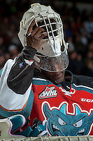 KELOWNA, CANADA - NOVEMBER 26: Michael Herringer #30 of the Kelowna Rockets stands in net against the Regina Pats on November 26, 2016 at Prospera Place in Kelowna, British Columbia, Canada.  (Photo by Marissa Baecker/Shoot the Breeze)  *** Local Caption ***