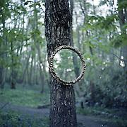 Vinny's mirror.