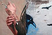 Miguel Angel Romeo_Simbiogénesis