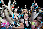 The front row cheers as Virgin Mobile Freefest headliner Blink-182 performs on the mainstage at Merriweather Post Pavilion in Columbia, Md.
