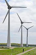 Nederland, the Netherlands, Urk, 9-5-2017 NOP Agrowind, energiebedrijf RWE Essent en Westermeerwind exploiteren een windpark op land en in het water van het IJsselmeer. De stroomproducent bouwde hier windmolens die 5 megawatt op land, en 3 megawatt op zee produceren. Siemens leverde turbines. Een fietser rijdt erlangs. FOTO: FLIP FRANSSEN