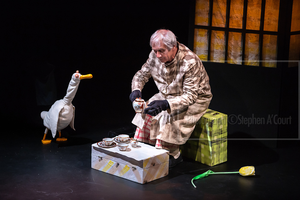 Wellington, NZ. 18 March 2013. DUCK, DEATH AND THE TULIP at Downstage Theatre. Performed by Peter Wilson. A Little Dog Barking production. Part of the Capital E National Arts Festival, 11-23 March 2013. Based on the internationally celebrated book by Wolf Erlbuch. Adapted for the stage by Peter Wilson and Nina Nawalowalo through the kind permission of Gecko Press. A duck strikes up an unlikely friendship with Death, and a strangely heart-warming story unfolds. Photo credit: Stephen A'Court. COPYRIGHT: ©Stephen A'Court