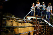 Broome Rodeo, 2013<br />