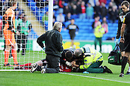Cardiff city's Heidar Helguson (on ground) receives treatment after he is injured as he scores the opening goal. NPower championship, Cardiff city v Hull city at the Cardiff city stadium in Cardiff, South Wales on Saturday 10th November 2012.  pic by Andrew Orchard, Andrew Orchard sports photography,