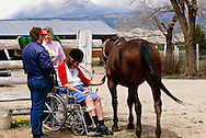 Therapeutic horsemanship center, physically challenged woman grooms horse
