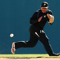 BRADENTON, FL -- January 13, 2010 -- Pittsburg Pirates player Delwyn Young fields ground balls during workouts at the Pirate City Spring Training Headquarters in Bradenton, Fla., on Wednesday, January 13, 2010.  (Chip Litherland for the Chip Litherland for the Pittsburgh Tribune-Review)