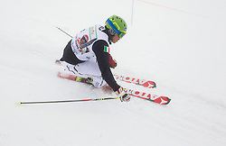 Peter Fill during last race of Andrej Jerman, Slovenian best downhill skier when he finished his professional alpine ski career on April 6, 2013 in Krvavec Ski resort, Slovenia. (Photo By Vid Ponikvar / Sportida)