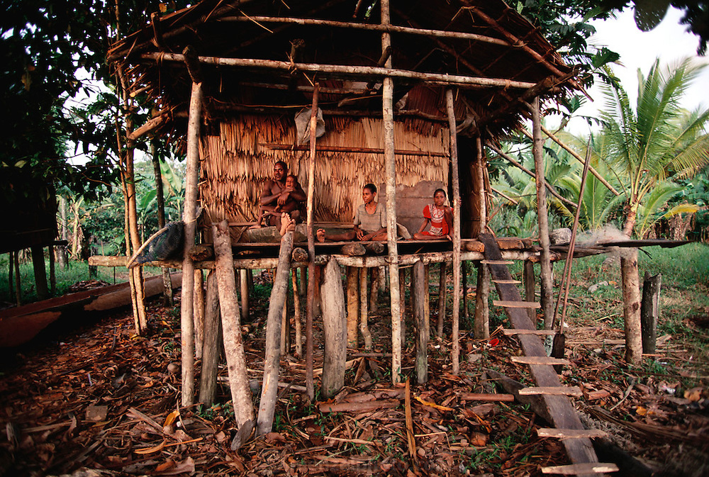 A typical house in Sawa Village on the Pomats River in the Asmat, a large, steamy hot tidal swamp. Irian Jaya, Indonesia. Image from the book project Man Eating Bugs: The Art and Science of Eating Insects.
