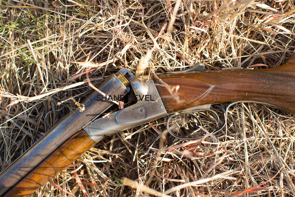 12/8/12 11:17:43 AM -- Quail hunting on the Cimarron Hills WMA in western Oklahoma. <br /> <br /> Photo by Shane Bevel