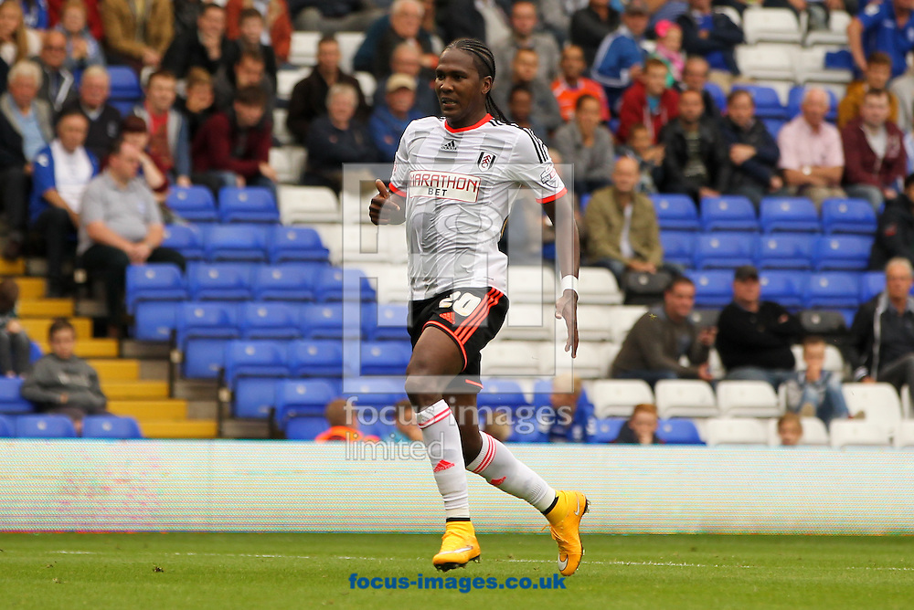 Hugo Rodallega of Fulham during the Sky Bet Championship match at St Andrews, Birmingham<br /> Picture by Tom Smith/Focus Images Ltd 07545141164<br /> 27/09/2014