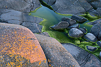 Lichen-covered rock in Långviksskär, Stockholm Archipelago, Sweden