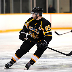 LINDSAY, ON - Feb 7 : Ontario Junior Hockey League Game Action between the Lindsay Muskies and the Aurora Tigers , Adam DiBrina #29 of the Aurora Tigers Hockey Club skates after the puck during third period game action.<br /> (Photo by Andy Corneau / OJHL Images)