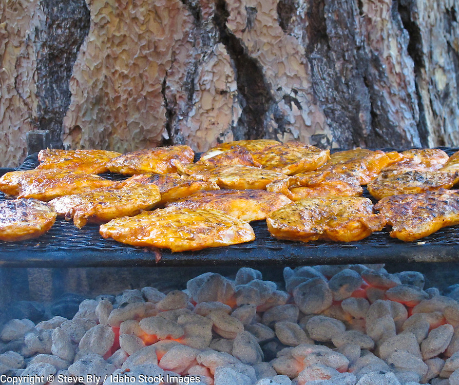 Idaho, Rafting,  Middle Fork of the Salmon River, Chicken on the grill at raftimg campsite.