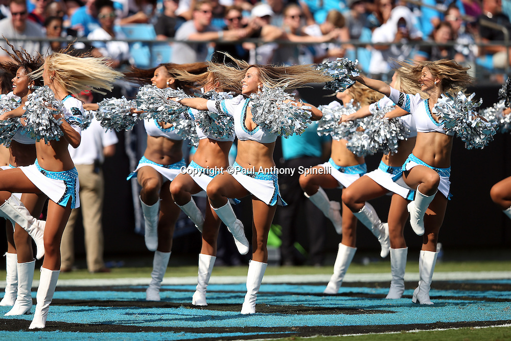 The Carolina Panthers cheerleaders do a dance routine during the Carolina Panthers 2015 NFL week 2 regular season football game against the Houston Texans on Sunday, Sept. 20, 2015 in Charlotte, N.C. The Panthers won the game 24-17. (©Paul Anthony Spinelli)