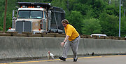 "(FOR SALE) 30 April 09 (kpchick1)  by Karen Pulfer Focht: Charlie Yonkers, chases a chicken down the interstate trying to catch it on Thursday. He is a cab driver from South Haven who had been watching this chicken trapped on the side of the road for 24 hours. It was on I55 near Riverside Drive. ""I know it is just a chicken, but it was suffering"" he said."