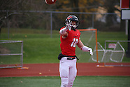 NCAA FB: North Central College vs. Rose-Hulman Institute of Technology (11-19-16)