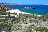 The palm beach in Vai, Crete