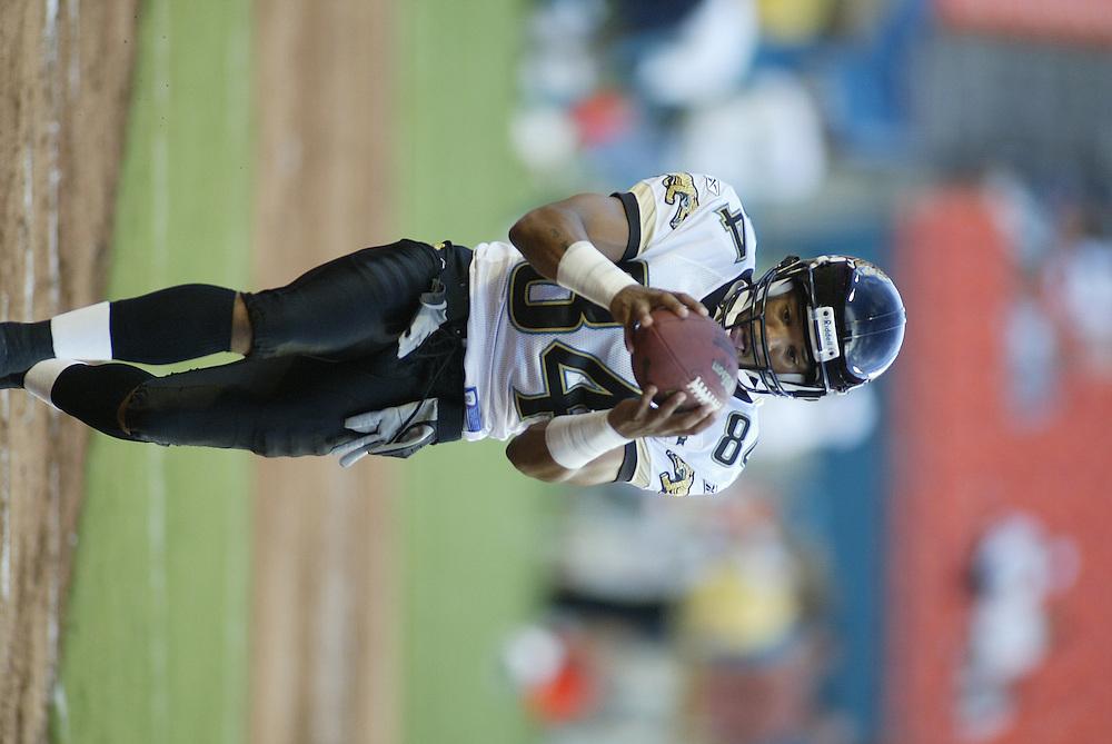 2004 NFL Preseason Week 3 - Jacksonville Jaguars @ Miami Dolphins