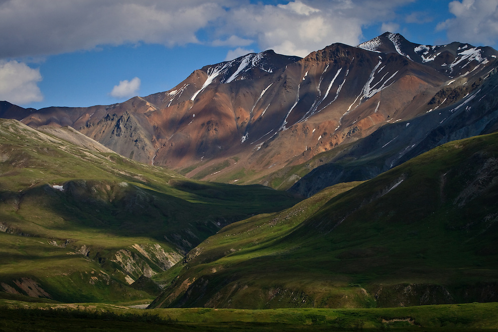 North Fork Gorge Creek Valley in Summer, Denali National Park, Alaska