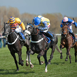 Scottish Grand National Meeting | Ayr Racecourse | 20 April 2012