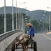 In 2000 the Vietnamese government launched its most ambitious public works project since the end of the war - the Ho Chi Minh Highway, a road linking the capital Hanoi in the north with the southern business centre of Ho Chi Minh City. Much of the resulting 1690-kilometer highway runs along Vietnam's jungle interior along the borders with Laos and Cambodia, oten on top or alongside the Ho Chi Minh Trail, a network of trails used by North Vietnamese soldiers and Viet Cong guerillas to secretly move supplies during the American War.