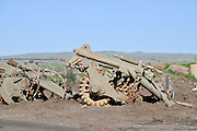 Israel, Golan Heights, the 679 armoured brigade memorial site