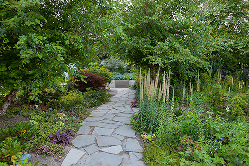 A Garden Path Made From Irregularly Shaped Pieces Of Flagstone Forming  U0027crazy Pavingu0027.