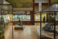 AFrica Museum Tervuren laatste dag van de vakantie met speciale kinder-activiteiten.