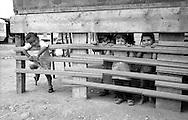 Rome   August 1999.Children Rom Romanian , in the Rom's camp  Casilino 700.
