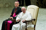 Vatican City jan 20th 2016, weekly general audience. In the picture Georg Gaenswein, pope Francis