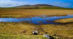 Griminish, North Uist, Outer Hebrides, Scotland<br /> <br /> (c) Andrew Wilson   Edinburgh Elite media