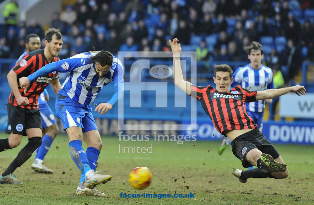 Atdhe Nuhiu of Sheffield Wednesday shot is blocked by Lewis Dunk of Brighton and Hove Albion during the Sky Bet Championship match at Hillsborough, Sheffield<br /> Picture by Richard Land/Focus Images Ltd +44 7713 507003<br /> 14/02/2015