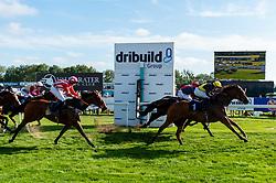 Bath Racecourse's Dino Family Raceday on Sunday 15th September 2019 - www.bath-racecourse.co.uk