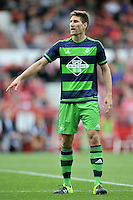 Federico Fernandez, Swansea City