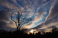The remaining light of Feb. 9, 2016; Central Park, New York City.