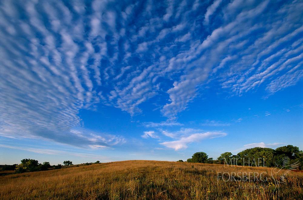 Audubon Spring Creek Prairie, Lancaster county, Nebraska.