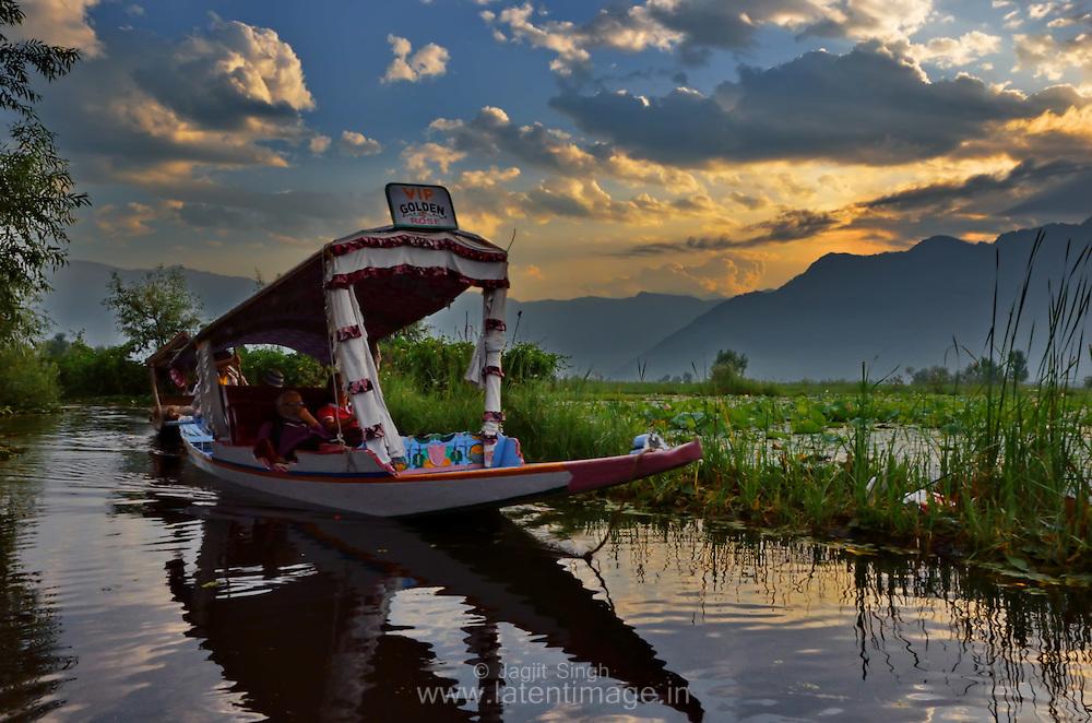 Early morning at the lake. Tourists enjoy the Shikara ride at Dal Lake, Srinagar, India.