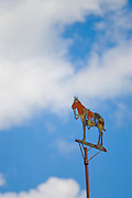 Weathervane from  Doylestown home
