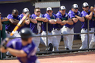 The K-State bench watches from the dugout as Jared Goedert bats against the Kansas Jayhawks.  The Wildcats held on to beat Kansas 5-4 at Tointon Stadium in Manhattan, Kansas, April 23, 2006.
