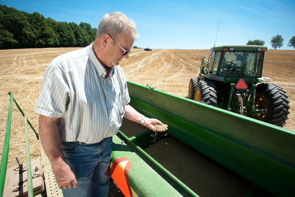 Farmer inspecting grain in combine