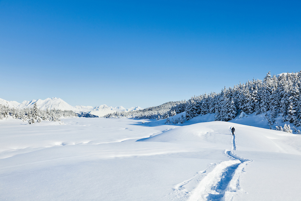 A hiker on snowshoes follows a trail in the snow on a sunny blue-sky day at Turnagain Pass in the Chugach National Forest of Southcentral Alaska. Winter. Afternoon. MR.