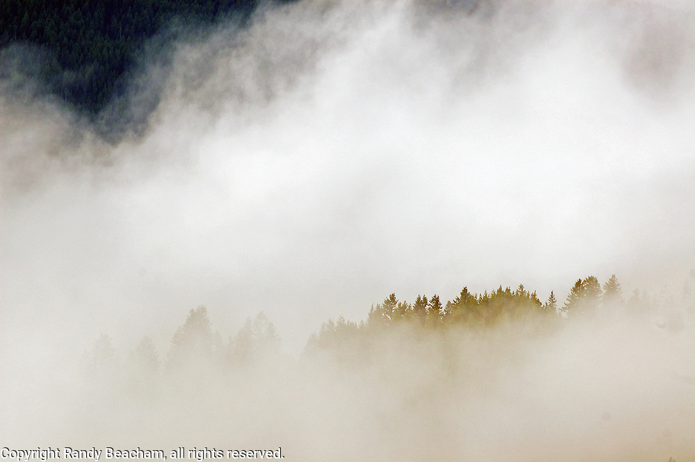 Fog lifting. Yaak Valley, Montana