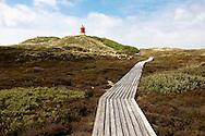 DEU, Germany, Schleswig-Holstein, North Sea,  Amrum island, dunes and plank roadway near Norddorf, in the background the cross light Norddorf, lighthouse.<br /> <br /> DEU, Deutschland, Schleswig-Holstein, Nordseeinsel Amrum, Duenenlandschaft und Bohlenweg bei Norddorf, im Hintergrund das Quermarkenfeuer Norddorf, Leuchtturm.