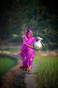 Asma Khatun, 9ys. Girl in purple sari with aluminum water pot