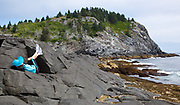 Courtney Blitch asleep on the rocks; Vacation trip to Monhegan Island