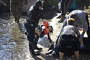 Oct. 15, 2015 - Lesbos Island, Greece - <br /> <br /> European Migrant Crisis<br /> <br /> A fatal Accident at sea caused at least nine deaths among migrants that in  thousands lands every day on the shores of the island of Lesbos from neighboring Turkey , distant only 4 nautical miles. Dead bodies are pulled out of the sea after Greek coastguard vessel hits migrant boat. EDITORS NOTE: GRAPHIC CONTENT<br /> ©Exclusivepix Media