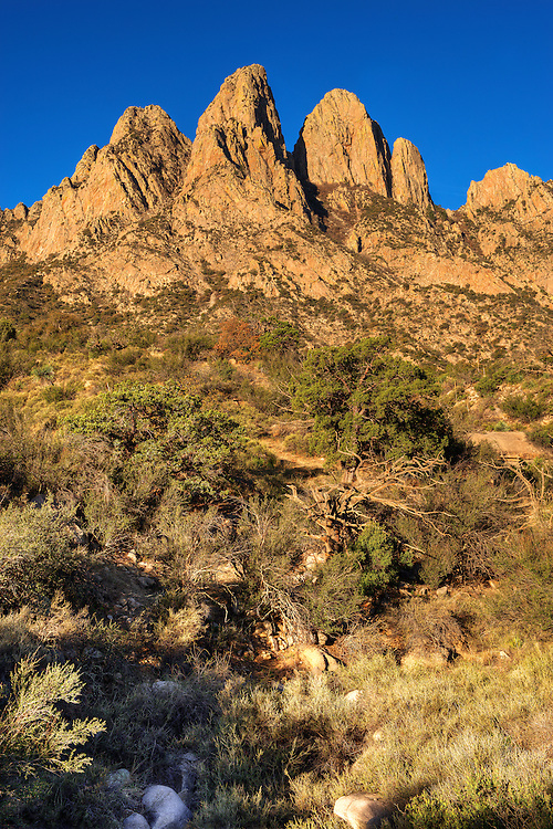 The three Rabbit Ears of the Organ Mountains (from left, South, Middle, and North).