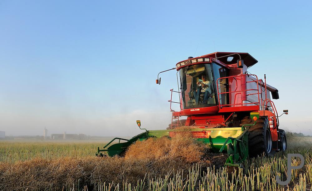 Custom harvester Justin Spielman from Newkirk, Oklahoma combines a field of canola near El Reno