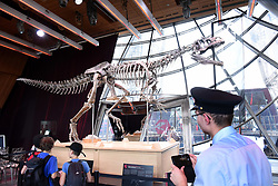 The skeleton of a Theropod dinosaur before the start of an auction on the Eiffel Tower. The 8,7 metre long dinosaur skeletion was discovered in the US state Wyoming with French data from the auction house Aguttes. The estimated price lies between 1,2 and 1,8 million euros. Paris, France, June 4, 2018. Photo by Alain Apaydin/ABACAPRESS.COM ¥Dinosaure ¥Squelette ¥Vente aux encheres